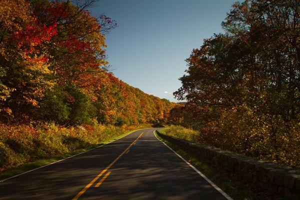 Skyline Drive Shenandoah in Fall