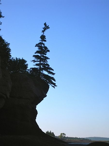 Hopewell Rock