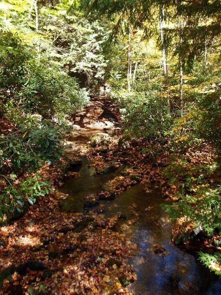 Falling Water creek