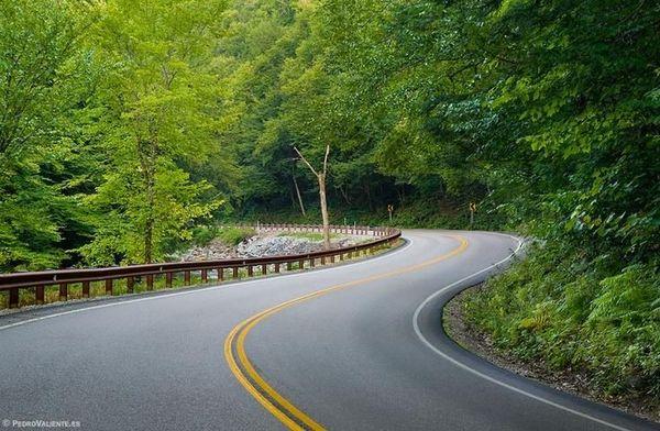 Vt Green Mountain Forest Loop Bennington Brattleboro