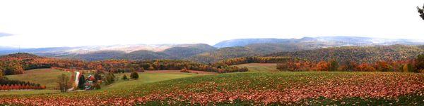 Kentuck Knob mountain panorama