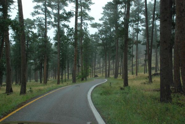 Iron Mountain Road, single lane roads, South Dakota