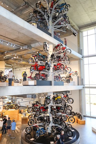 A tree of motorcycles!