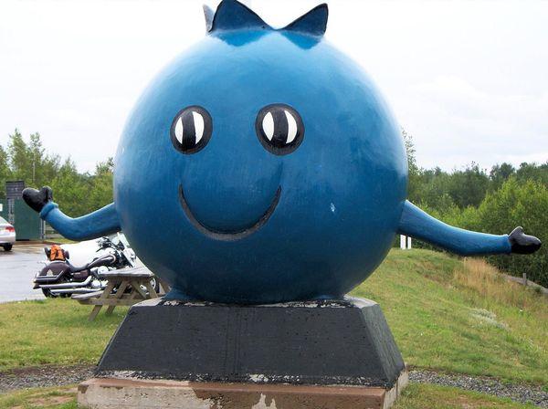 Oxford, Nova Scotia, World's Largest Blueberry