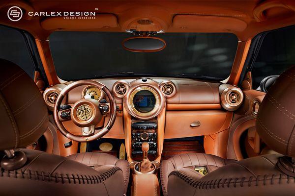 A typical Carlex Design interior. Fancy ain't it?