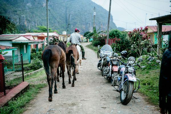 Fernando, our bike-rental guy, lives in a suburban Havana neighbourhood.