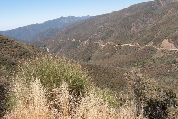 Los Padres National Forest Hwy 33