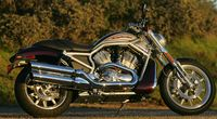 Harley Davidson Introduces the Street Rod