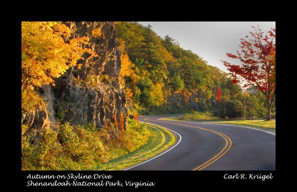 Gentle Curves on Skyline Drive in Shenandoah Park