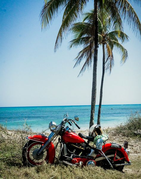 The Harley were ridden right onto the beach at Playa Larga, Cuba