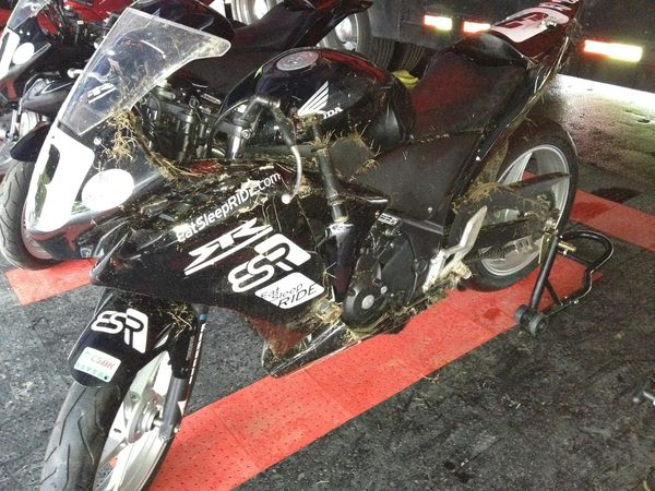 My CBR250 after lowside at turn 15 - Mont Tremblant