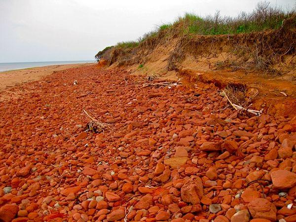Red Rocky Dalvay Beach